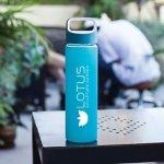 Vivid Glass Water Bottle