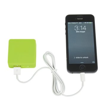 Primary Power Bank